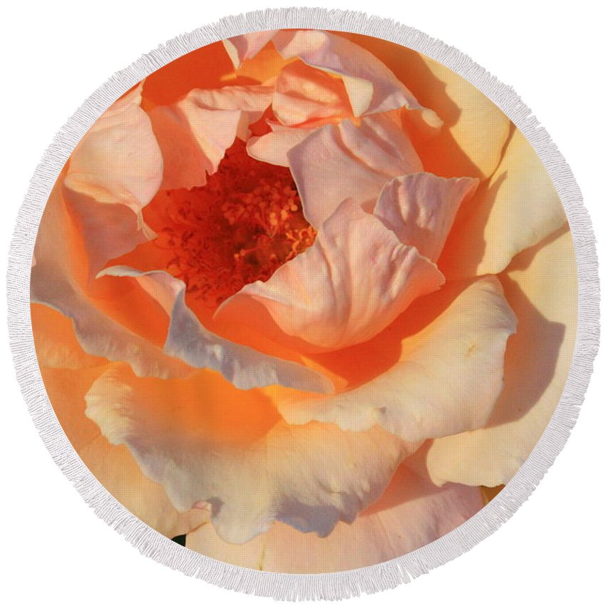 Rose Round Beach Towel featuring the photograph Sunset Rose by Carol Groenen