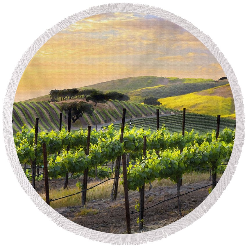 Vineyard Round Beach Towel featuring the photograph Sunset Vineyard by Sharon Foster