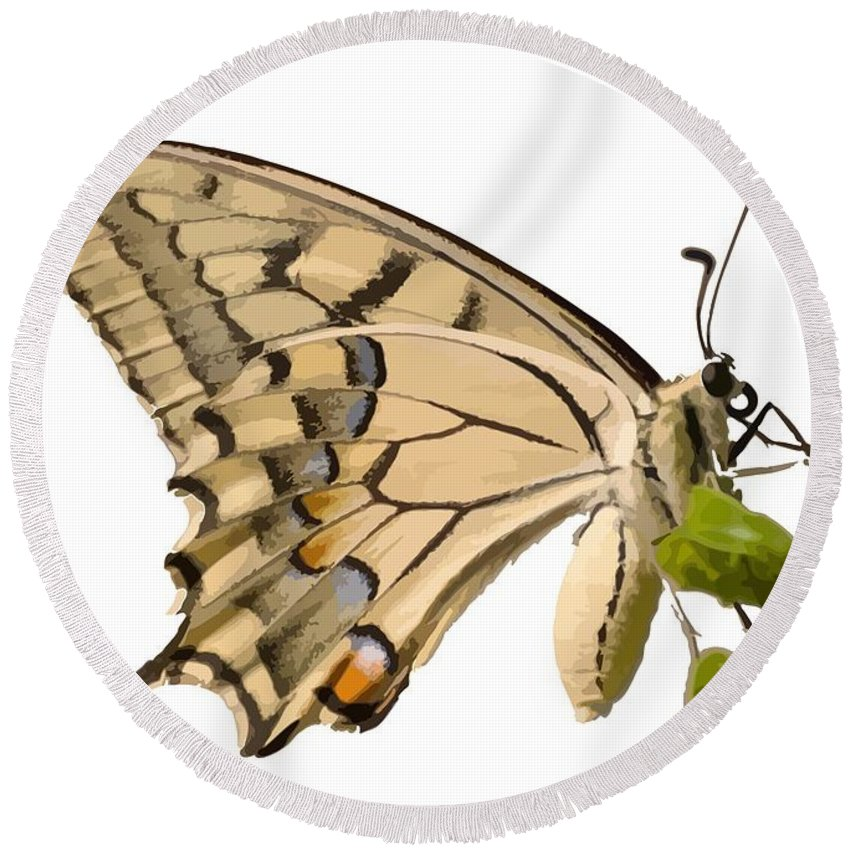 Butterfly Round Beach Towel featuring the photograph Swallowtail Butterfly Vector Isolated by Tracey Harrington-Simpson