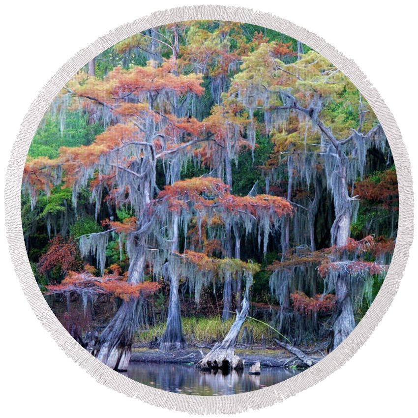 Autumn Round Beach Towel featuring the photograph Swamp Dance by Lana Trussell