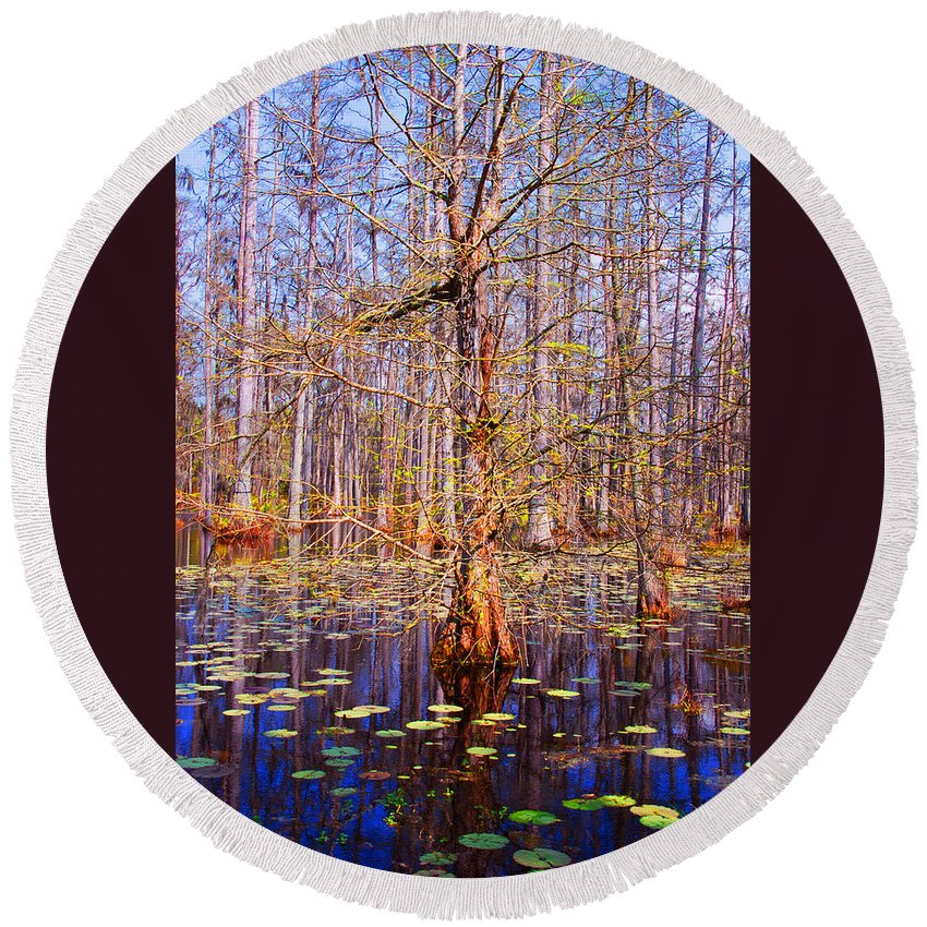 Swamp Round Beach Towel featuring the photograph Swamp Tree by Susanne Van Hulst