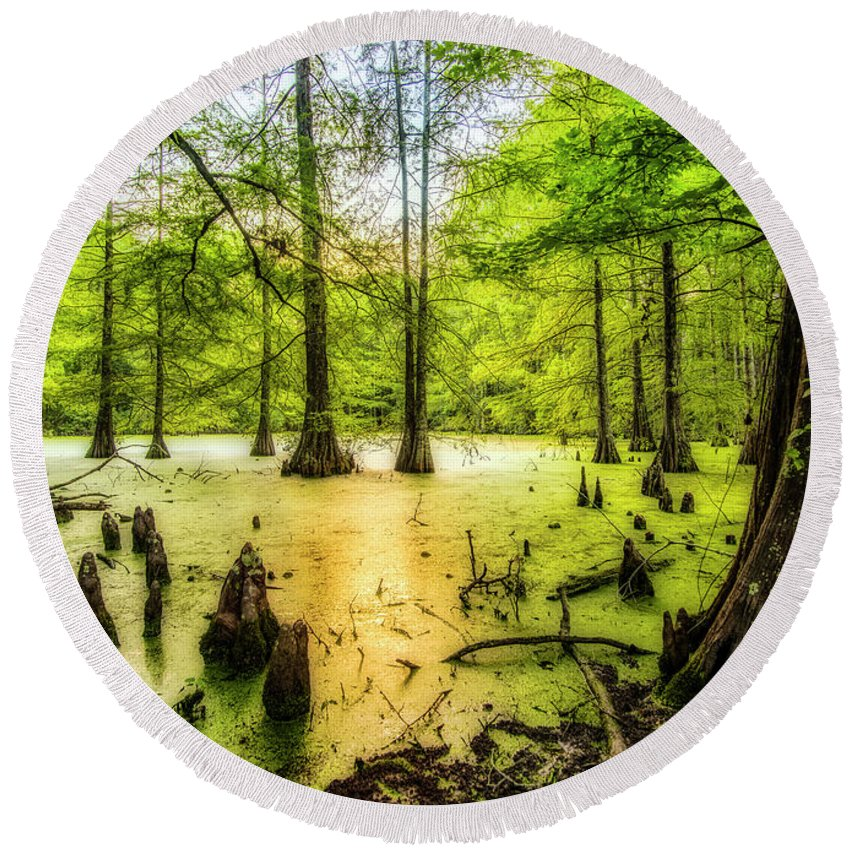 Louisiana Round Beach Towel featuring the photograph Swampland Dreams by Andy Crawford