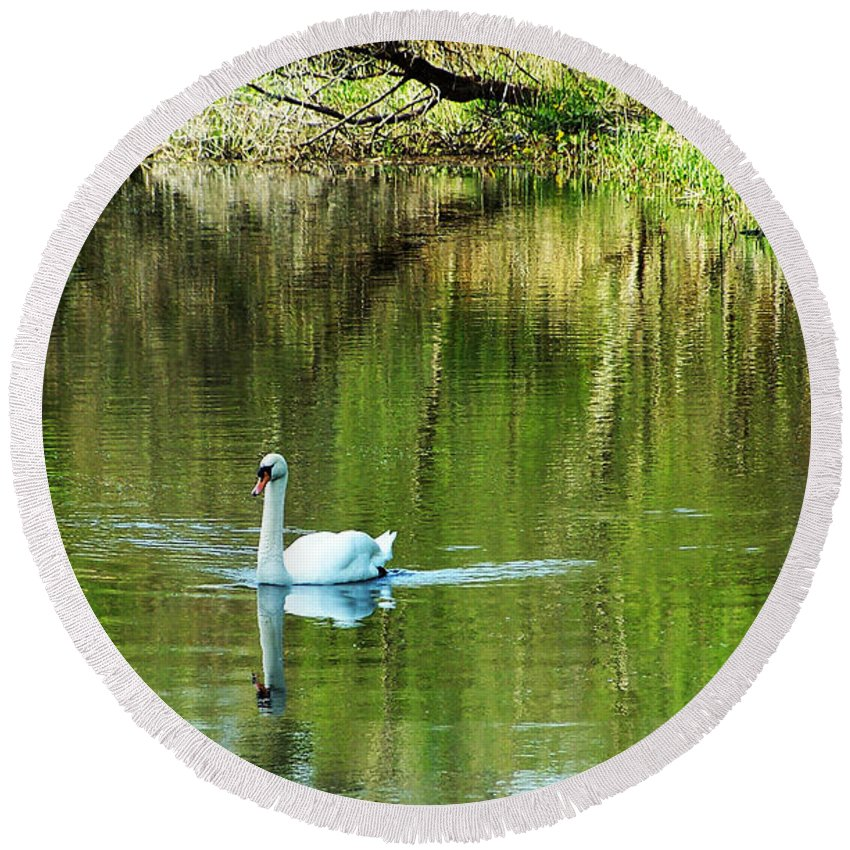 Irish Round Beach Towel featuring the photograph Swan On The Cong River Cong Ireland by Teresa Mucha