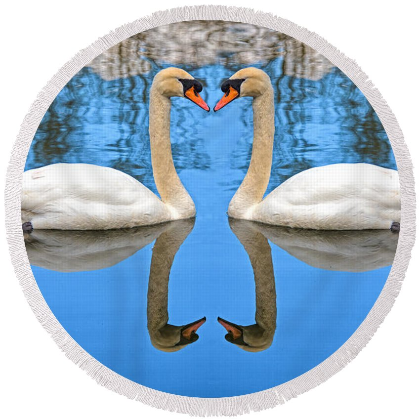 Swan Round Beach Towel featuring the photograph Swan Princess by Roy Pedersen