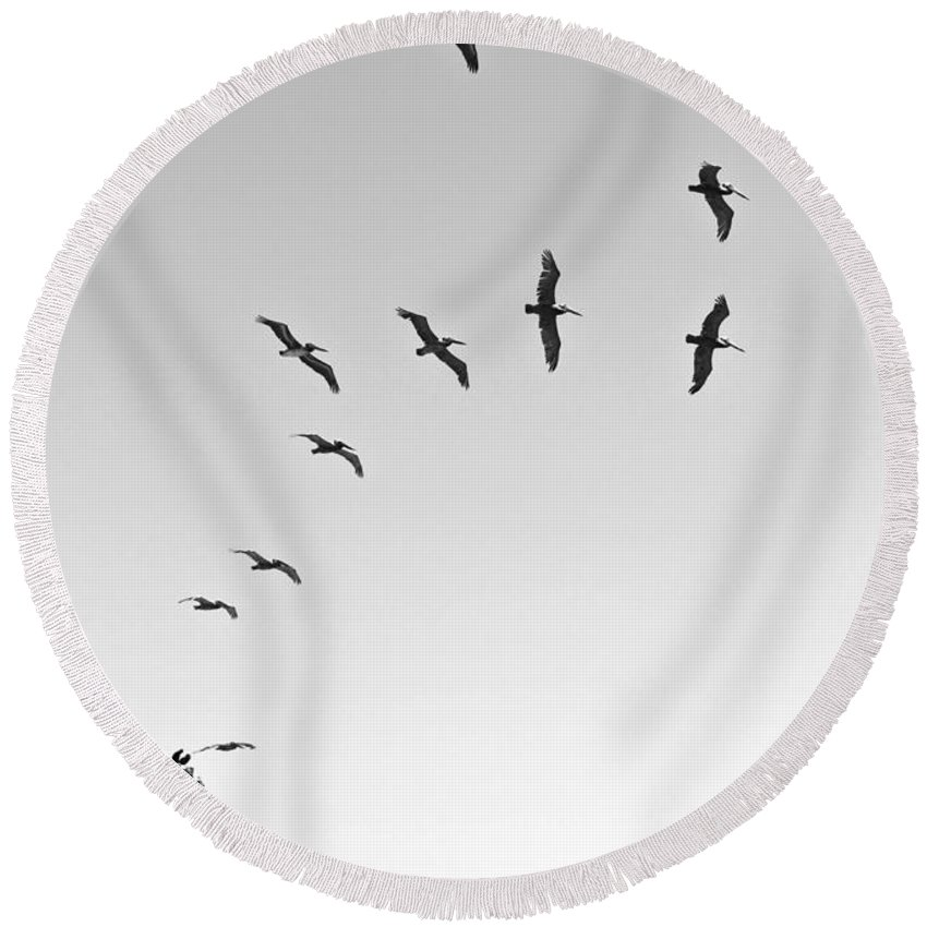 Natural Bridges State Beach Round Beach Towel featuring the photograph Take Off by Jamie Pham