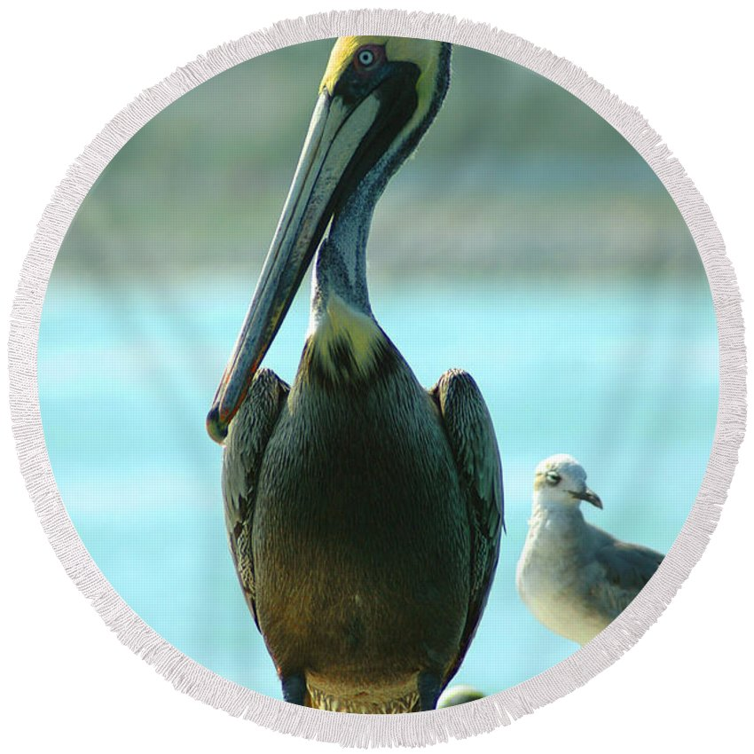 Pelican Round Beach Towel featuring the photograph Tall Pelican by Susanne Van Hulst