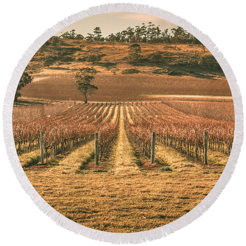 Australia Round Beach Towel featuring the photograph Tasmanian Winery In Winter by Jorgo Photography - Wall Art Gallery