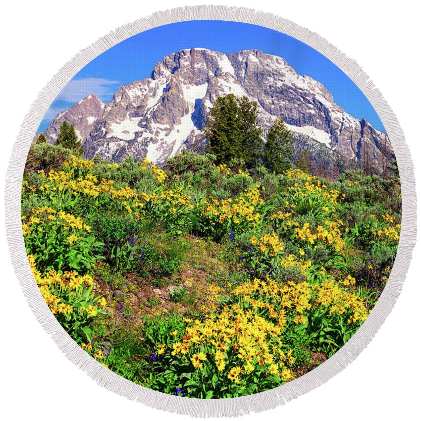 Grand Teton National Park Round Beach Towel featuring the photograph Teton Spring In The Valley by Greg Norrell