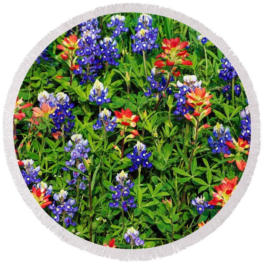 Photography Round Beach Towel featuring the photograph Texas Bluebonnets And Indian Paintbrush by Panoramic Images