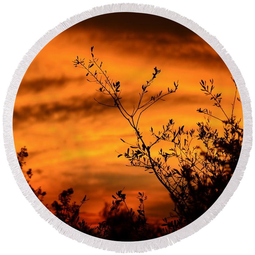 Sunrise Round Beach Towel featuring the photograph Texas Sunrise by Shannon L Smith