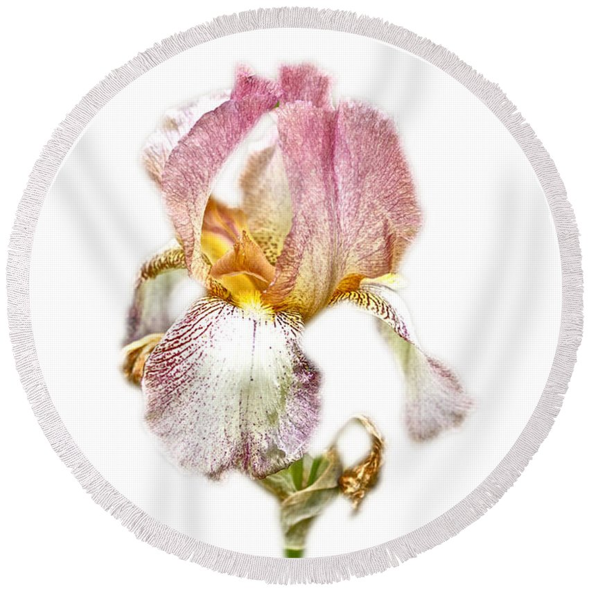 thank You Round Beach Towel featuring the photograph Thank You Greeting Items - Bearded Iris by Mother Nature