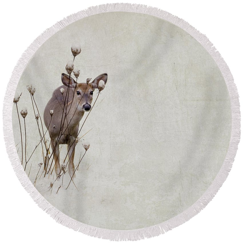 Winter Round Beach Towel featuring the photograph Thanksgiving Visitor by Ron Jones