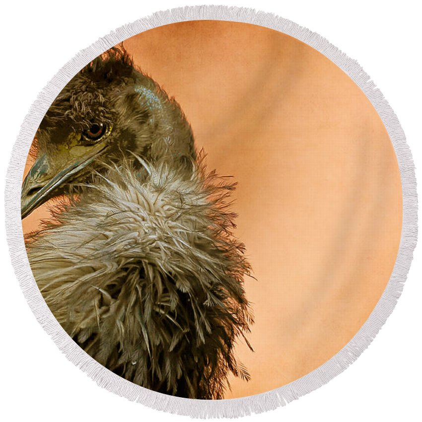 Emu Round Beach Towel featuring the photograph That Shy Come-hither Stare by Lois Bryan