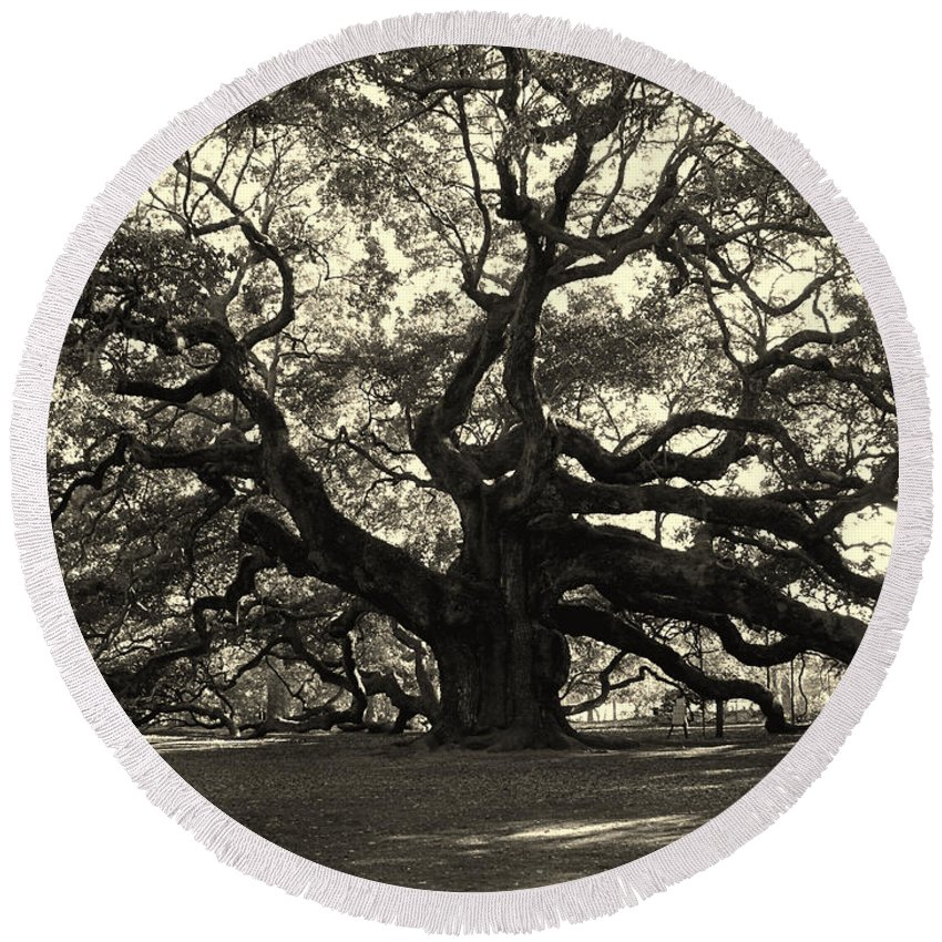 Angel Oak Round Beach Towel featuring the photograph The Angel Oak by Susanne Van Hulst