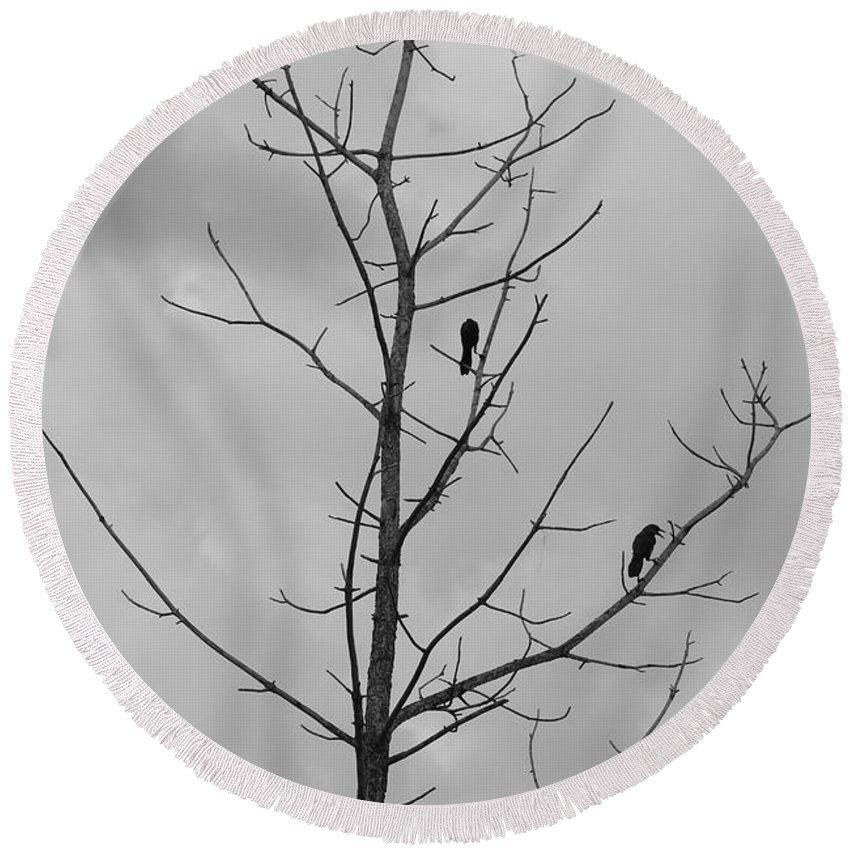 Tree Round Beach Towel featuring the photograph The Birds by Rob Hans