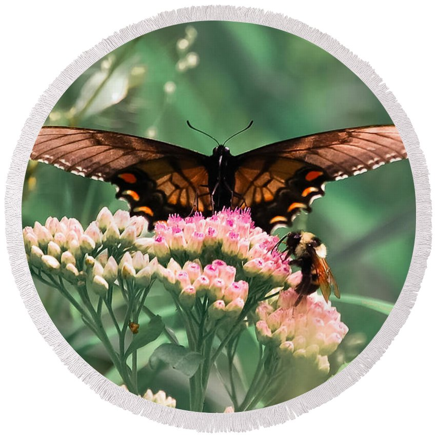 Butterfly Round Beach Towel featuring the digital art The Butterfly And The Bumblebee by DigiArt Diaries by Vicky B Fuller
