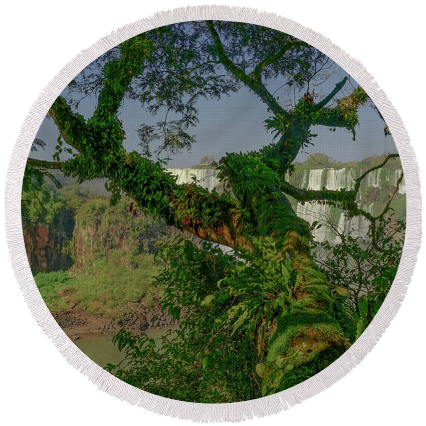 Iguacu Falls Round Beach Towel featuring the photograph The Canopy by Brian Kamprath