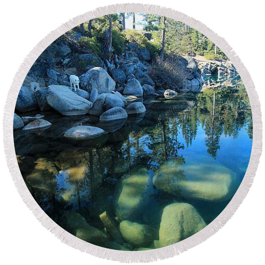 Lake Tahoe Round Beach Towel featuring the photograph The Clarity Of Morning by Sean Sarsfield