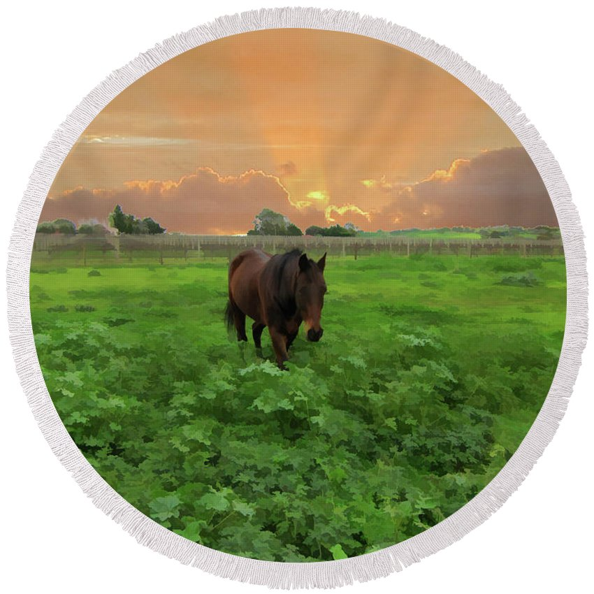 Horse Round Beach Towel featuring the photograph The Crack Of Dawn by Douglas Barnard