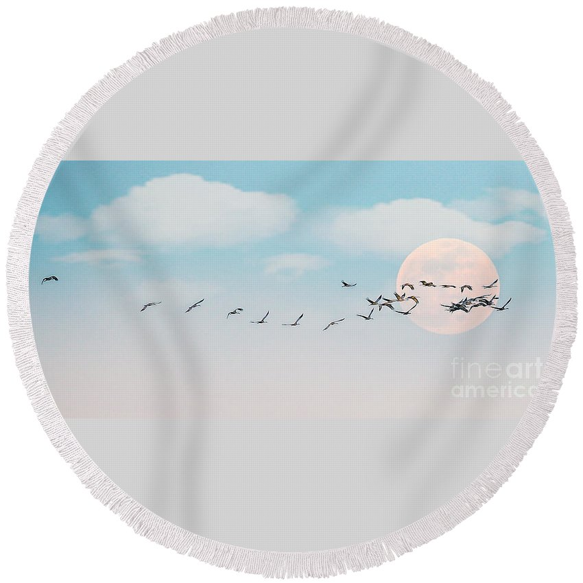 Full Moon Round Beach Towel featuring the photograph The Cranes Flew Over The Moon by Elizabeth Winter