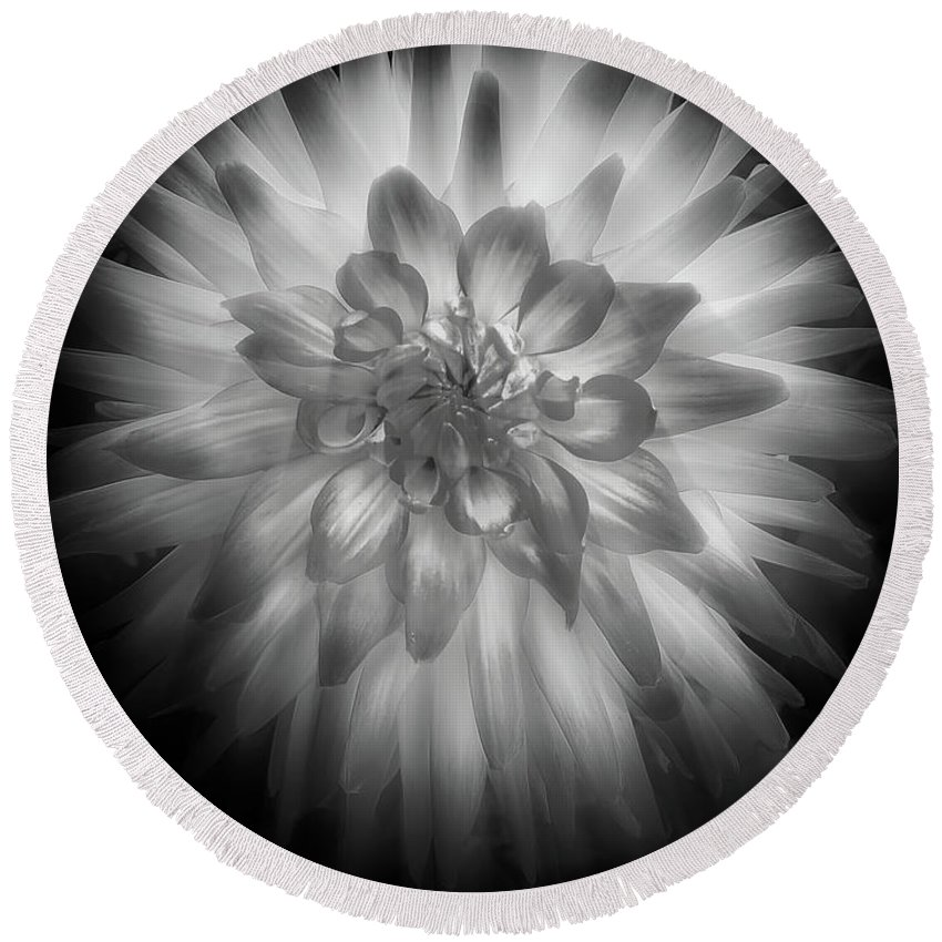 Dahlia Flower Round Beach Towel featuring the photograph The Dahlia Bw by Mike Nellums