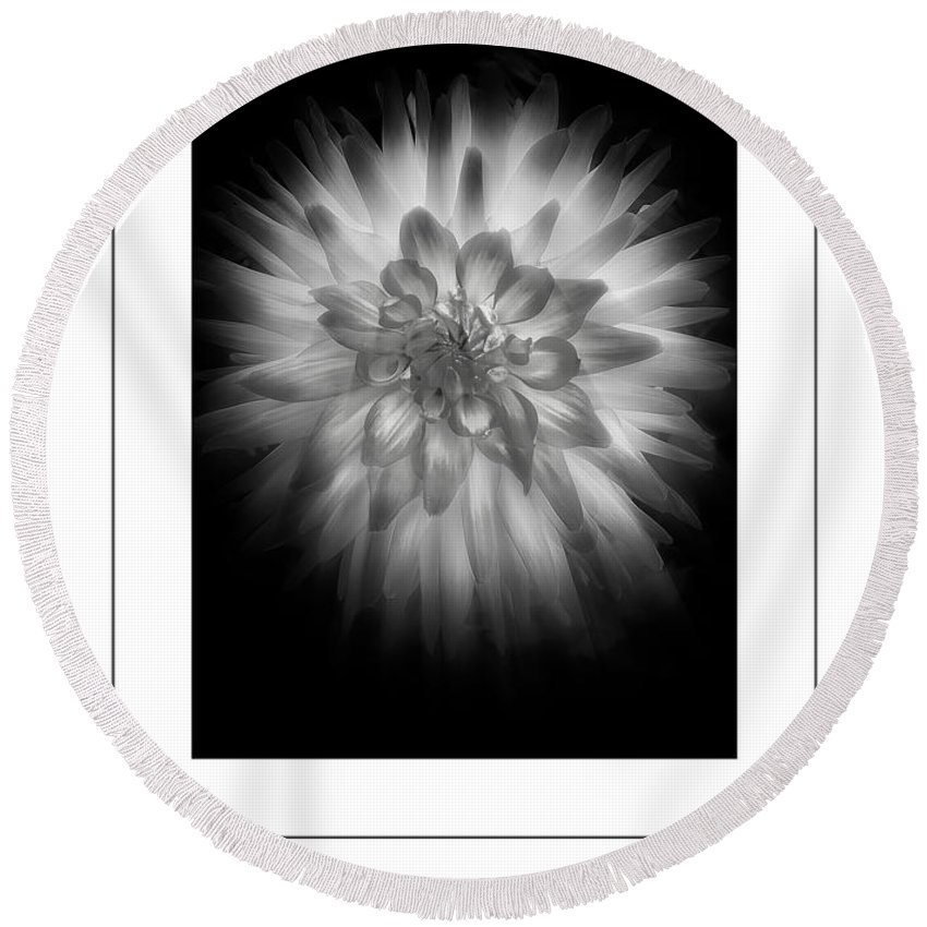 Dahlia Flower Round Beach Towel featuring the photograph The Dahlia Bw Poster by Mike Nellums