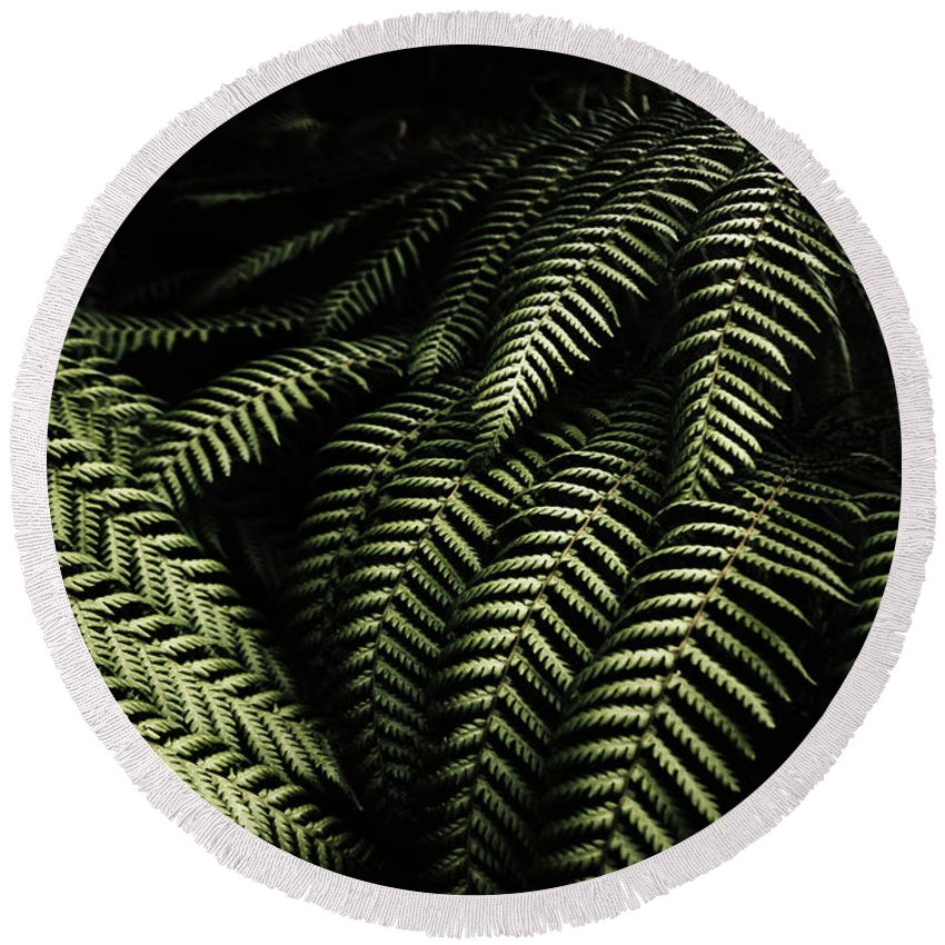 Rainforest Round Beach Towel featuring the photograph The Exotic Dark Jungle by Jorgo Photography - Wall Art Gallery