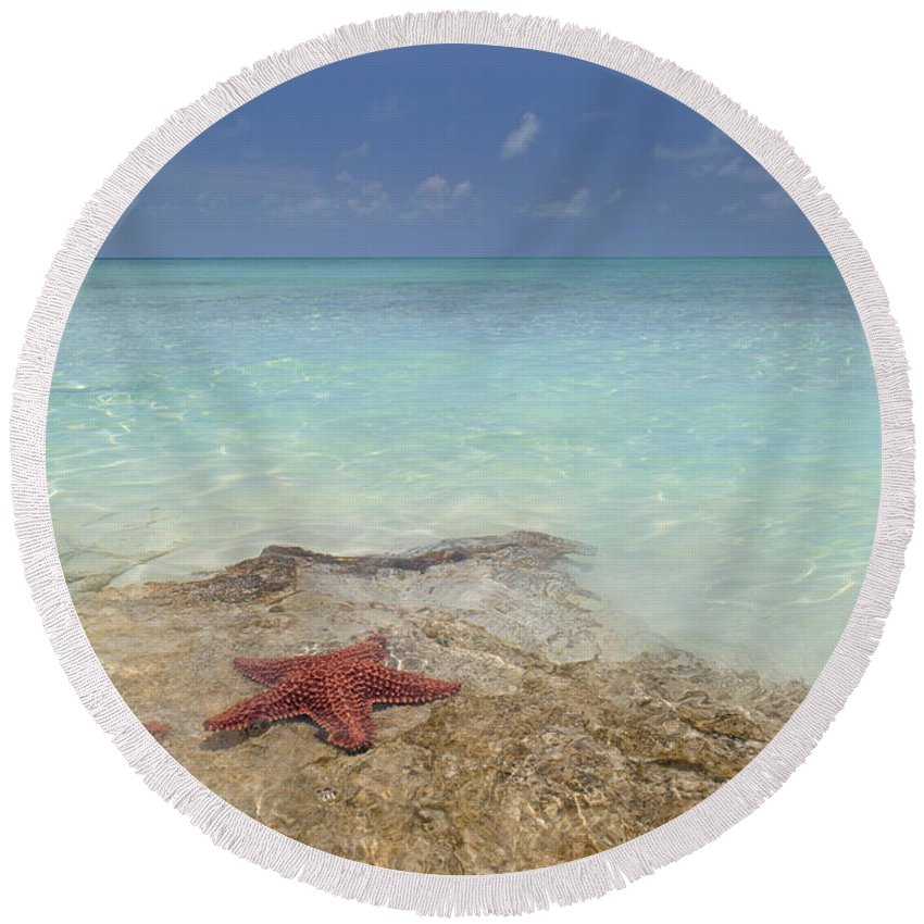 Starfish Round Beach Towel featuring the photograph The Gate Keepers by Betsy Knapp