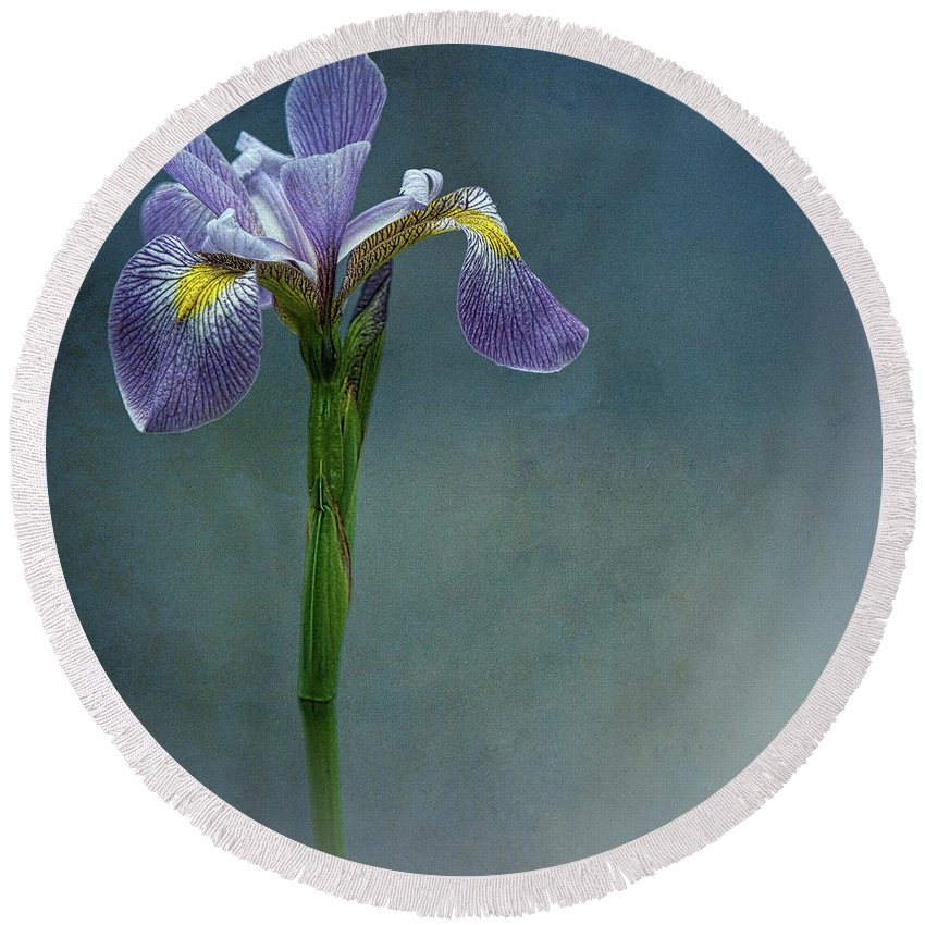 Flower Round Beach Towel featuring the photograph The Harlem Meer Iris by Chris Lord