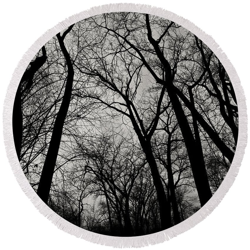 Monochrome Round Beach Towel featuring the photograph The Haunt Of Winter by CJ Schmit