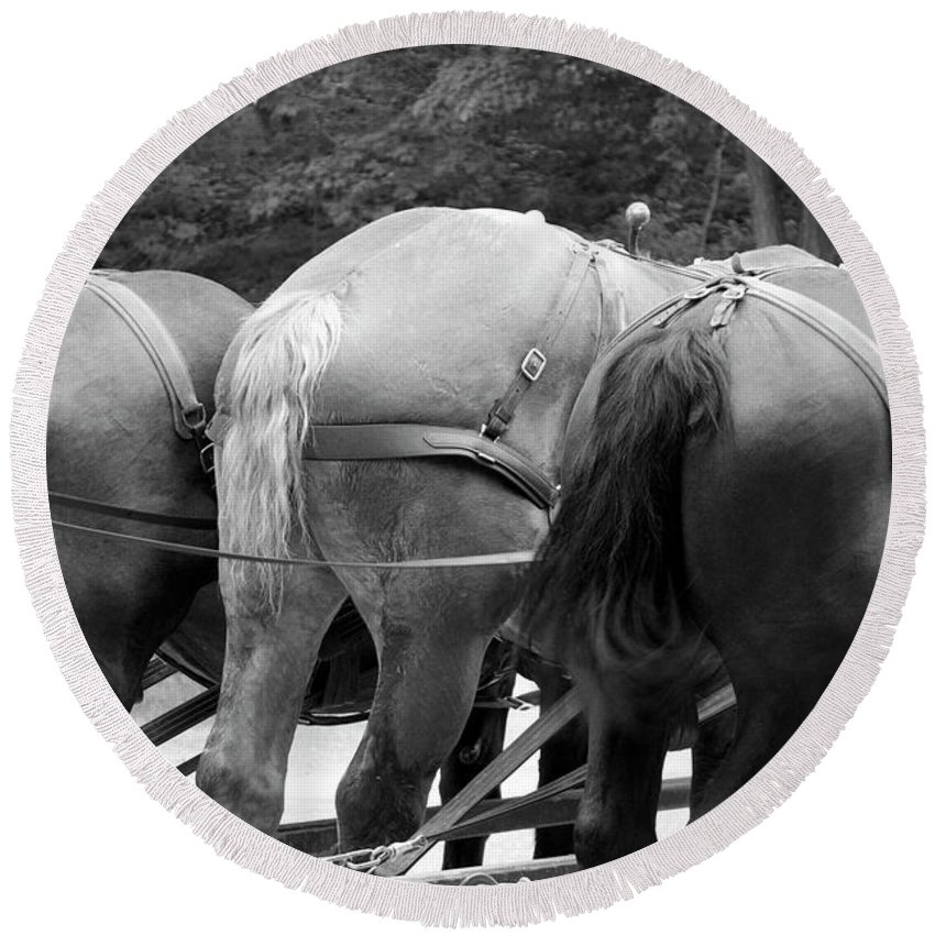 Mackinac Round Beach Towel featuring the photograph The Horses Of Mackinac Island Michigan 03 Bw by Thomas Woolworth