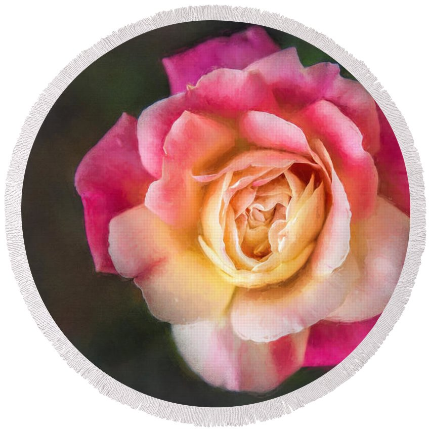 Nature Round Beach Towel featuring the photograph The Last Rose Of Summer, Painting by Sharon McConnell