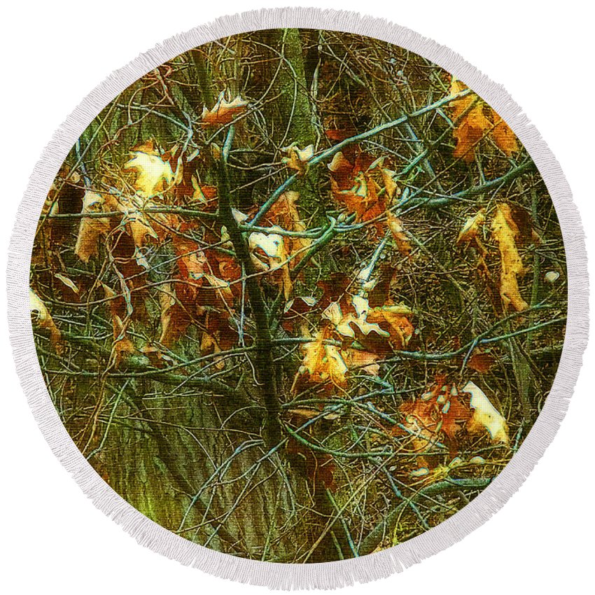 Autumn Round Beach Towel featuring the digital art The Light In The Forest by RC DeWinter
