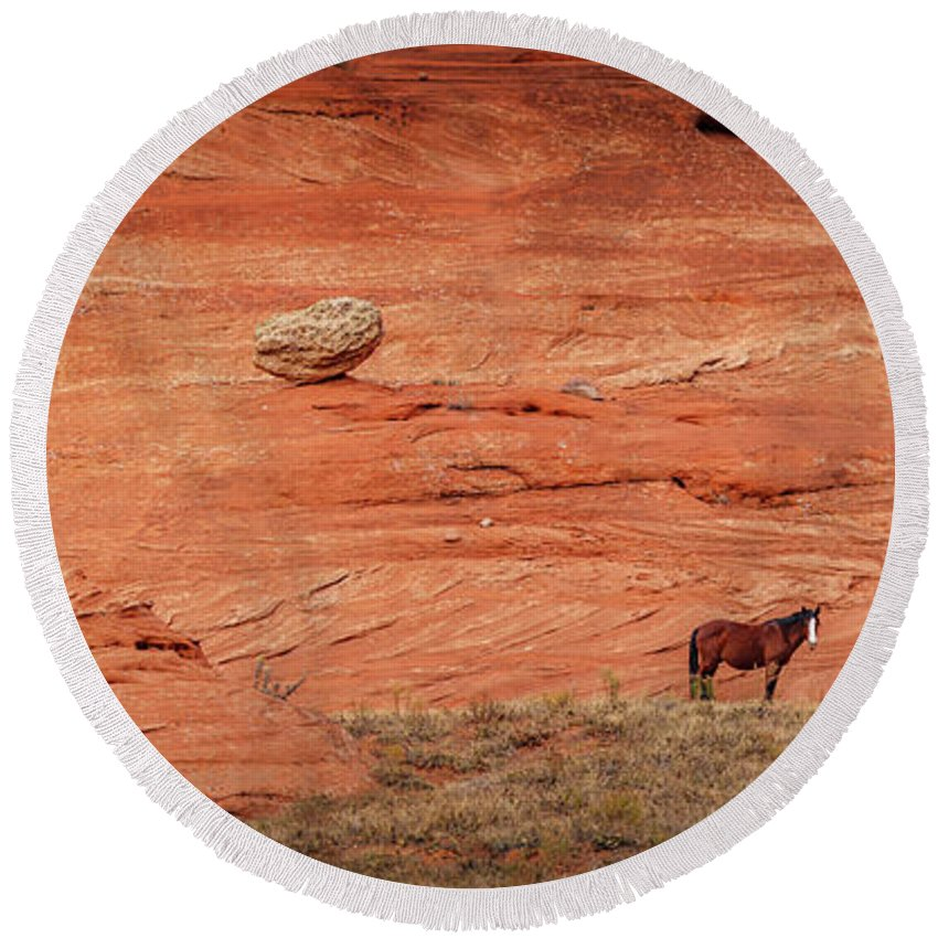 Canyon De Chelly Round Beach Towel featuring the photograph The Lone Horse by Mike Penney