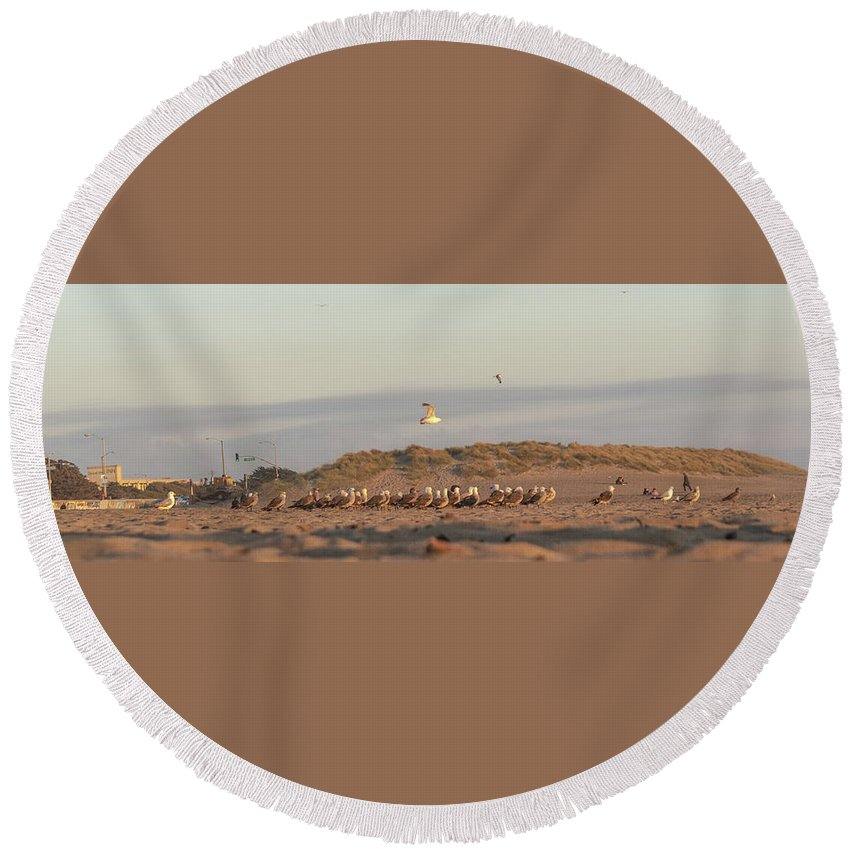 Vallejo Round Beach Towel featuring the photograph The Meeting by Kristofer M Johnson