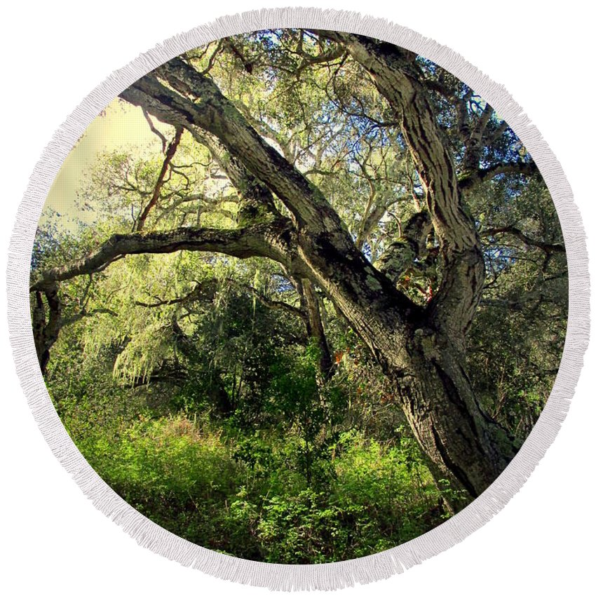 Oak Round Beach Towel featuring the photograph The Mighty Oaks Of Garland Ranch Park 1 by Joyce Dickens