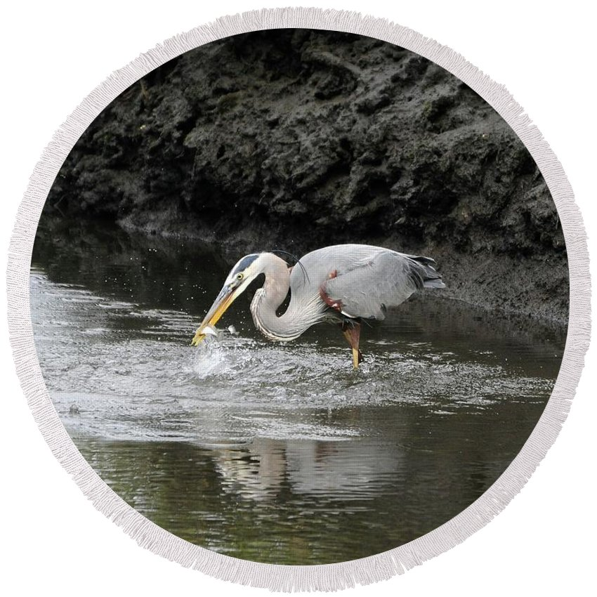 Great Blue Heron Round Beach Towel featuring the photograph The One That Got Away by Al Powell Photography USA