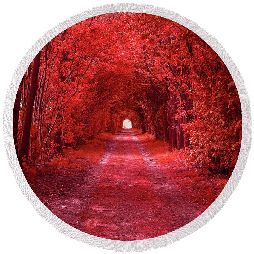 Red Round Beach Towel featuring the photograph The Path 2 by Steve K