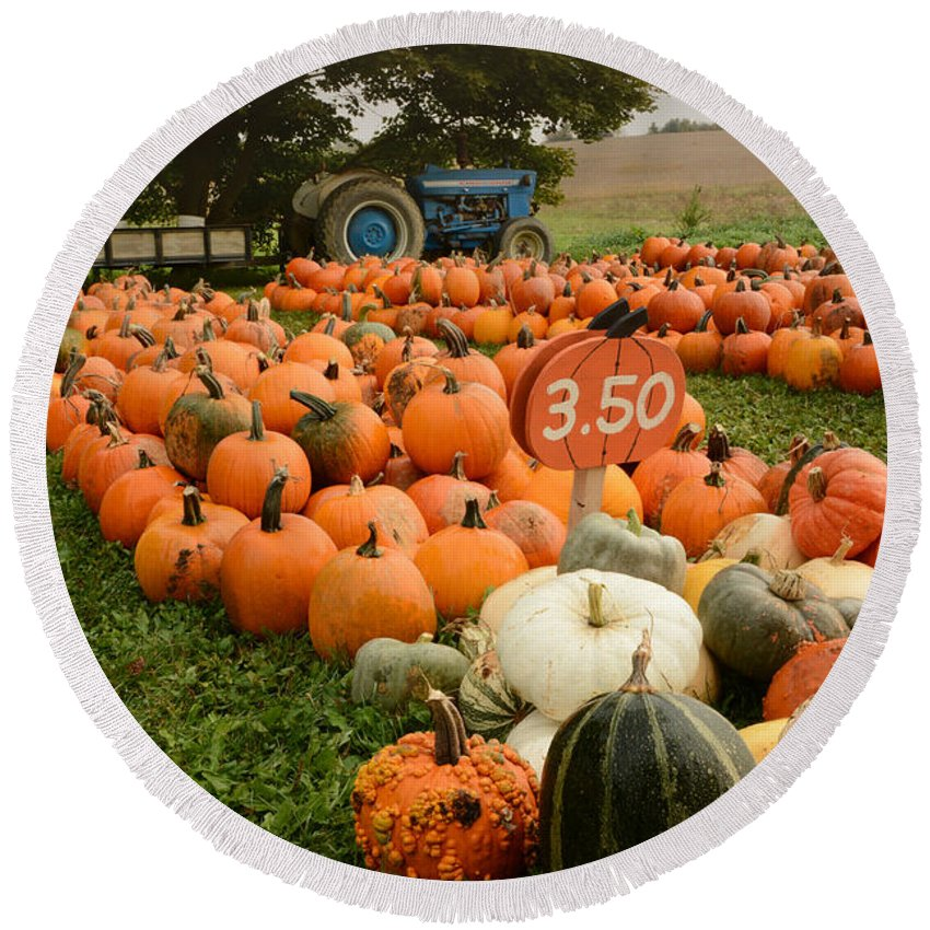 Pumpkins Round Beach Towel featuring the photograph The Pumpkin Farm One by Charles Owens