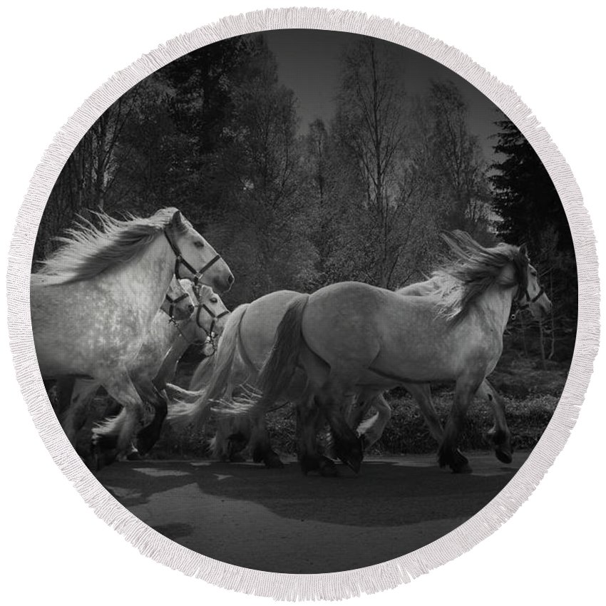 Horse Round Beach Towel featuring the photograph The Queen's Horses by Dorit Fuhg