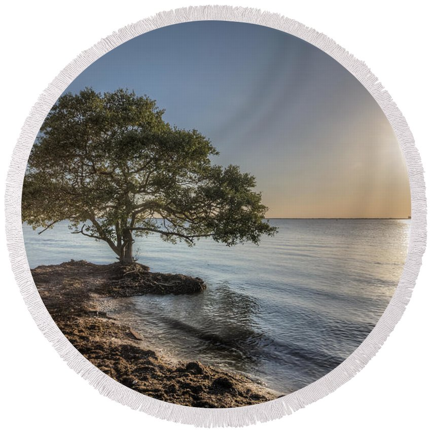 Tree Round Beach Towel featuring the photograph The Tree Of Life by Ronald Kotinsky