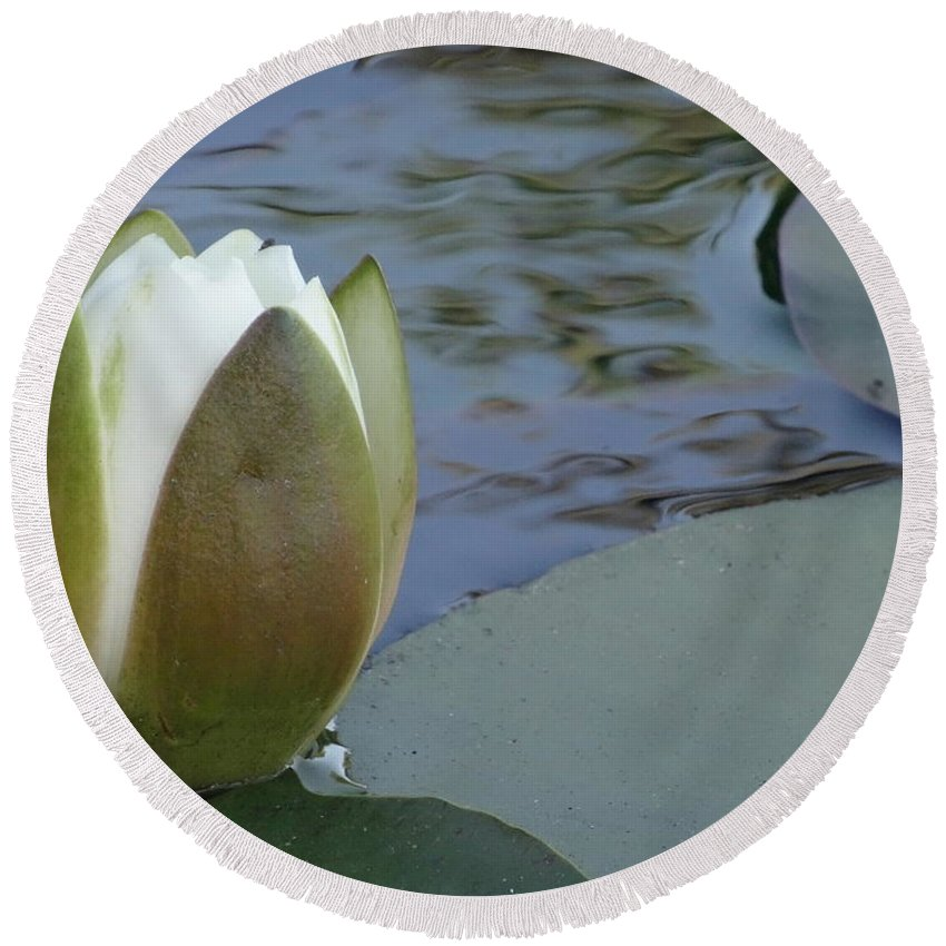 Lotus Bud Round Beach Towel featuring the mixed media This Buds For You by Richard Laeton