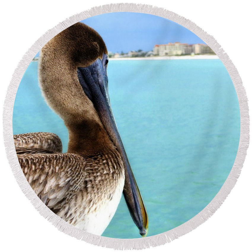 Clearwater Round Beach Towel featuring the photograph This Is My Town - Pelican At Clearwater Beach Florida by Angela Rath