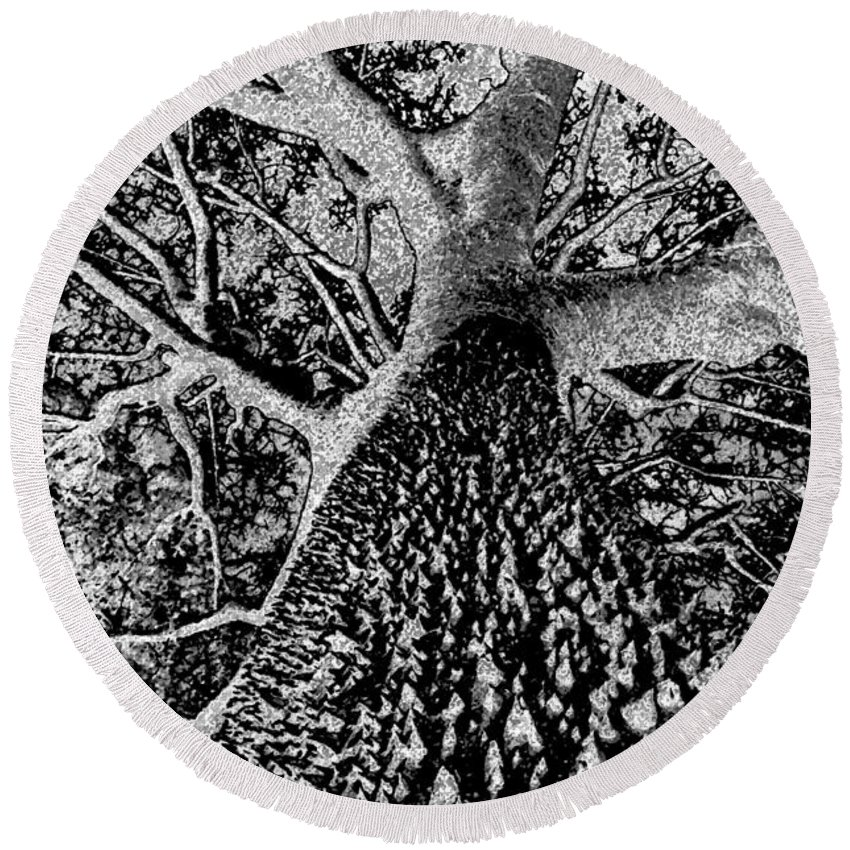 Black And White Round Beach Towel featuring the painting Thorn Tree Black And White by David Lee Thompson