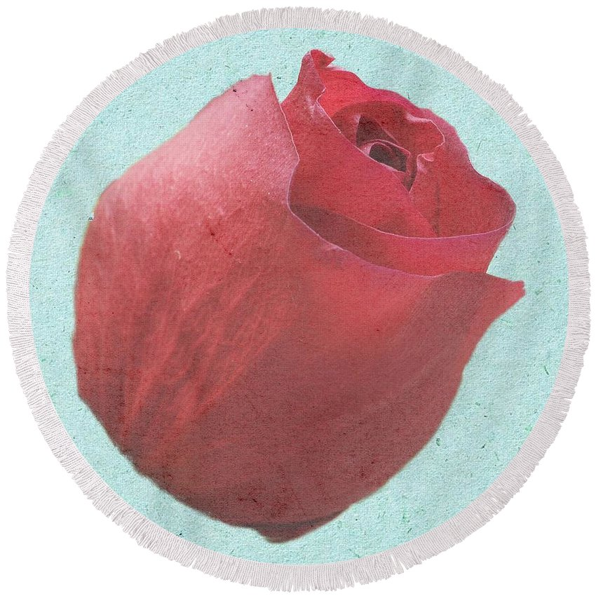 Rose Round Beach Towel featuring the photograph Thornless by Jeffrey Kolker
