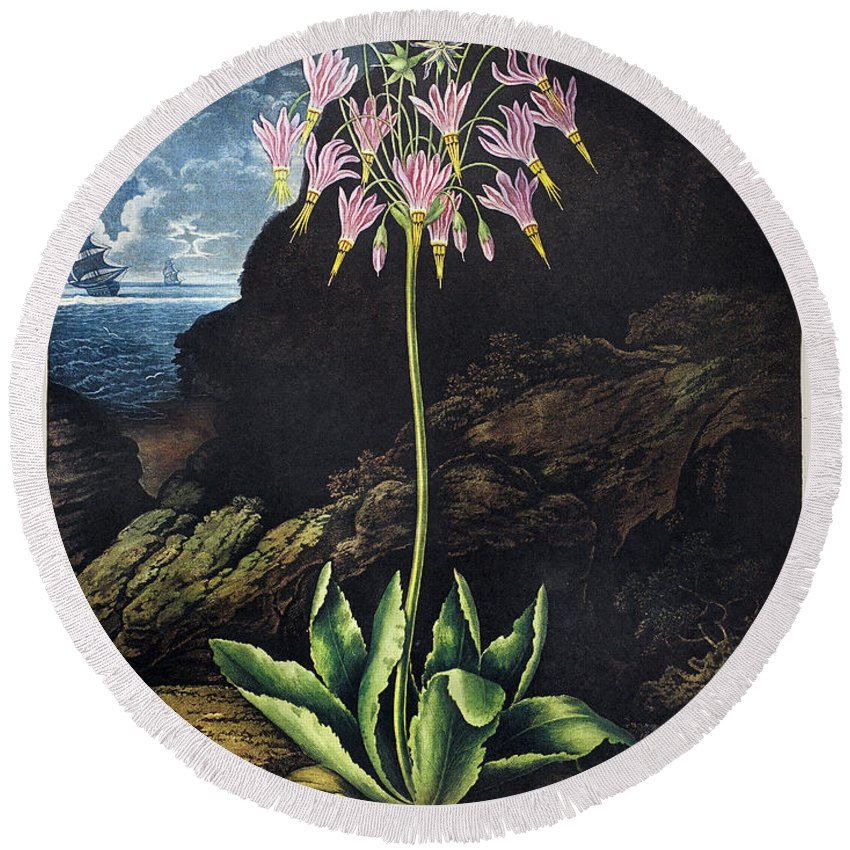 1801 Round Beach Towel featuring the photograph Thornton: Cowslip by Granger