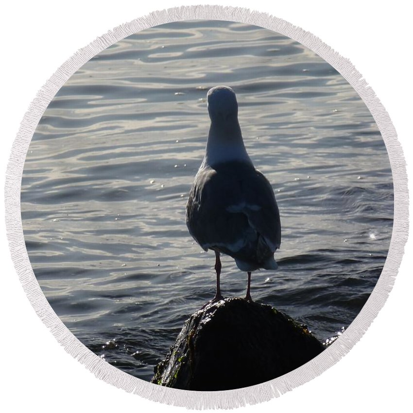 Seagull Round Beach Towel featuring the photograph Thoughts Of A Seagull by John Franke