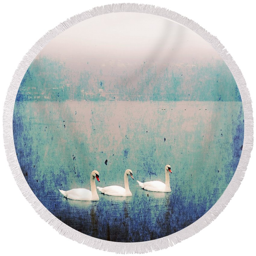 Swan Round Beach Towel featuring the photograph Three Swans by Joana Kruse
