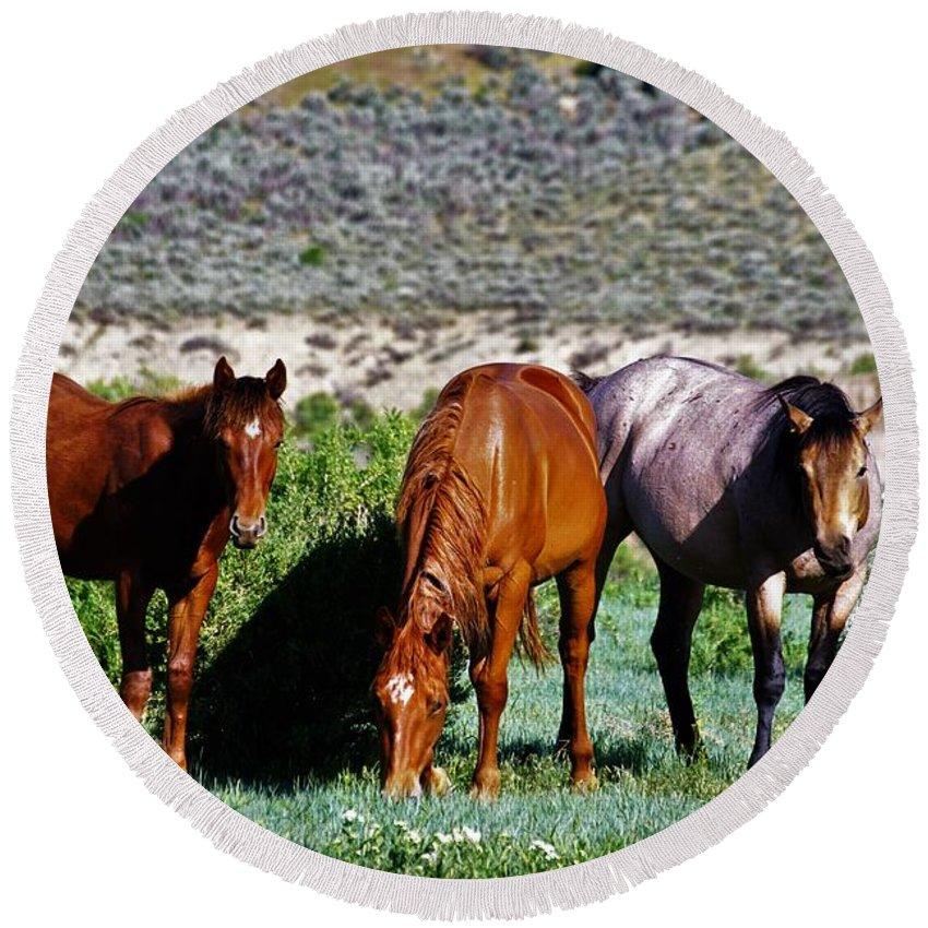 Horses Round Beach Towel featuring the photograph Three Together by Merle Grenz