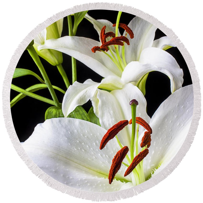 White Tiger Lily Round Beach Towel featuring the photograph Three White Lilies by Garry Gay